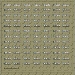 Nummernschildsatz DE