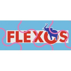 Schmitz Flexos